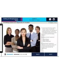 Virtual Teams eLearning Course 1