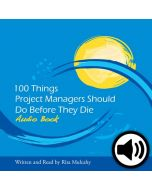 100 Things Project Managers Should Do Before They Die - Audio Book
